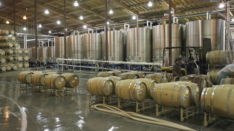 A cellar crew tops off wine barrels Stock Video Footage