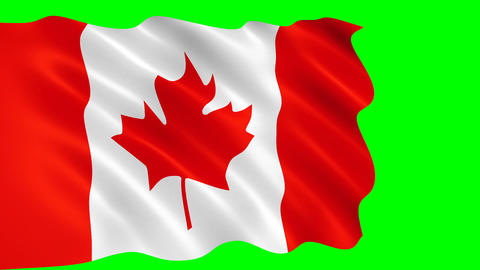 Canadian flag waving in the wind CG動画