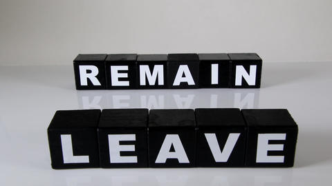 Leave or Remain Live Action