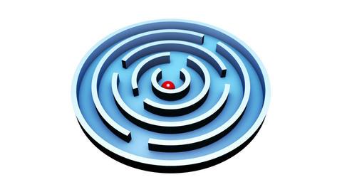 Wisdom (Round Maze). 3D animation Animation