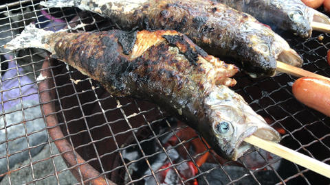 4K video to enjoy fish and meat at BBQ Footage
