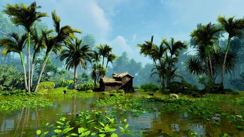 Tropical jungle hut Animation