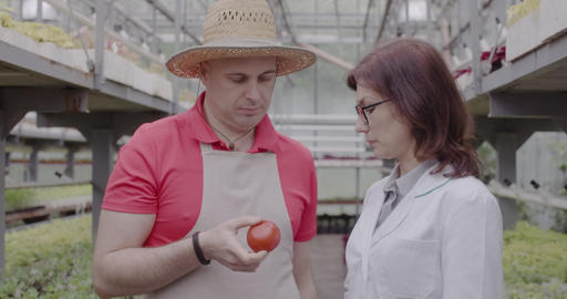 Sad Caucasian man in straw hat giving tomato to professional female scientist in Live Action