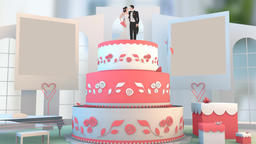 Wedding Animation Newly Wed couple bride groom animation Footage