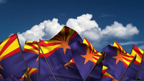 Waving Arizona State Flags Animation