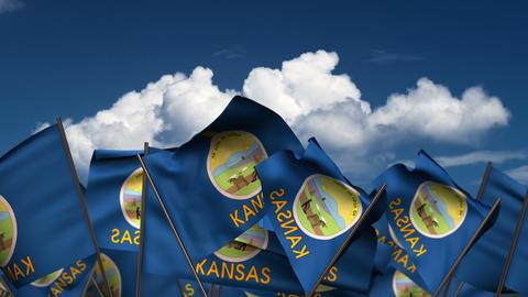 Waving Kansas State Flags Animation