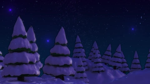 SHA Snow land Night Animation