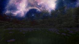 Spring forest, timelapse starry sky Animation