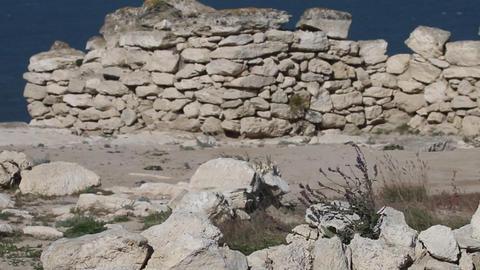 Ancient Greek Polis (Greek colonization) and Greek-Scythian settlements Live Action