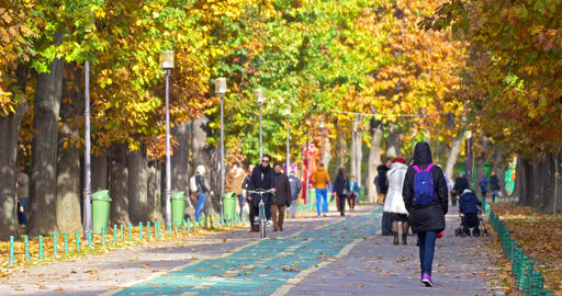 People Taking A Walk And Exercising In Herastrau Park On Autumn Day Footage