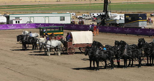 Draft Horse and historic wagon demonstration DCI 4K 588 Footage