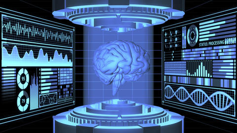 3D Rendering anatomical Realistic Brain in Futuristic Laboratory and Digital HUD screens aligned in Animation