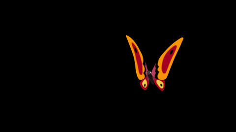 Orange butterfly flies in, sits and flies away alpha looped Animation