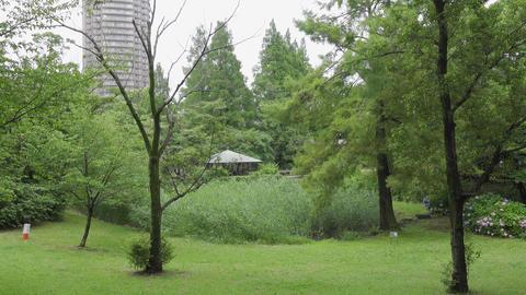 Rainy season sarue park016 Live Action