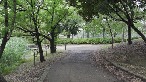 Rainy season sarue park064 Live Action