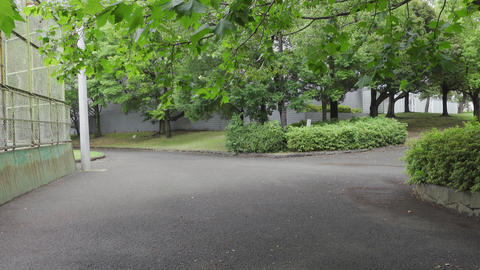 Rainy season sarue park081 Live Action