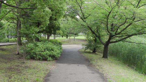 Rainy season sarue park084 Live Action