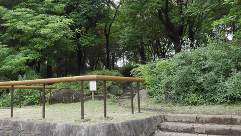 Rainy season sarue park112 Live Action