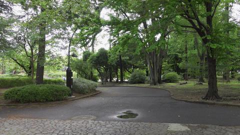 Rainy season sarue park128 Live Action