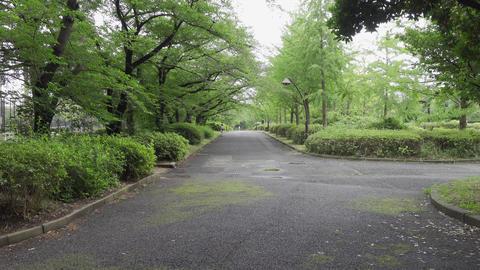 Rainy season sarue park129 Live Action