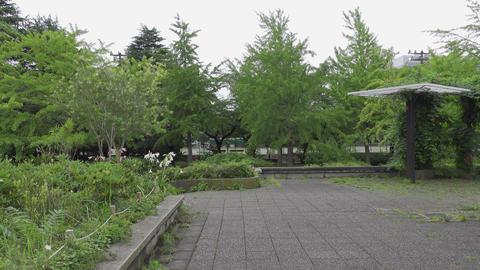 Rainy season sarue park162 Live Action