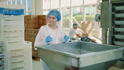 Candy factory. Factory worker checking packing machine Live Action