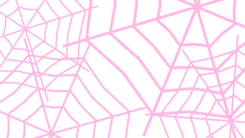 TRANSITION【SPIDERWEB】8 Color Set 1