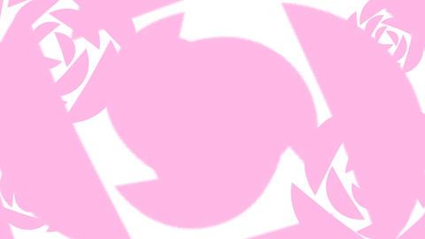 TRANSITION【ROSE】8 Color Setl 2