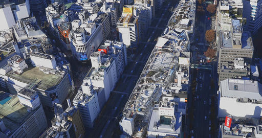 A panoramic cityscape in Tokyo high angle wide shot Live Action