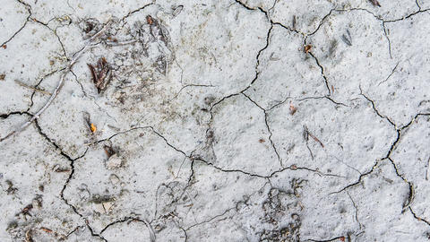 Drought Cracked Ground Animation