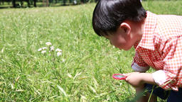 Japanese young boy playing with magnifying glass in a park, Tokyo, Japan Footage