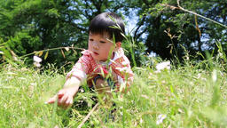Japanese young boy playing with magnifying glass in a park, Tokyo, Japan ภาพวิดีโอ