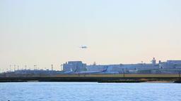 Airplane landing at Tokyo International Airport, Tokyo, Japan Footage