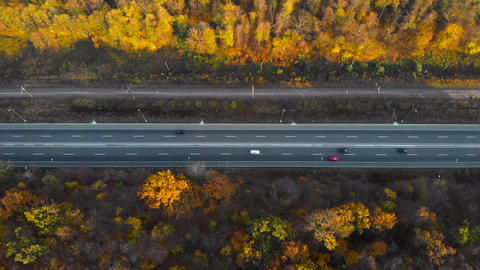 Top view two forest halves are shared by the road ライブ動画