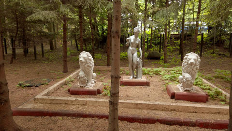 Antique sculptures among fir trees in courtyard Live Action