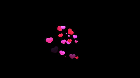 Pink hearts motion graphics with night background Animation