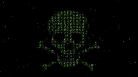 Matrix code skull motion graphics with night background Animation