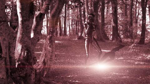 Animationof metalic dancing robot In The Wood Animation