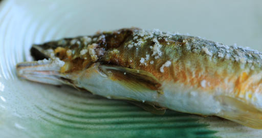 A grilled sweetfish on the Japanese dish at lunch handheld Live Action