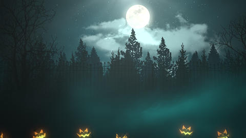 Halloween background animation with the forest and pumpkins. Happy holiday abstract backdrop Animation