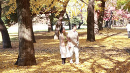 Japanese mature couple walking in a city park in Autumn Footage