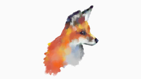 Fox Drawing Sketch GIF