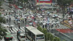 Crowd walking under the rain at Shibuya scramble crossing, Tokyo, Japan Footage