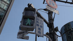 Traffic light in Ginza district, Tokyo, Japan Footage