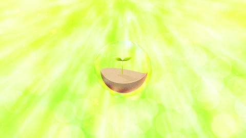 light green sunshine and leaf inside bubble Videos animados