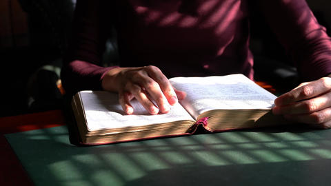 Woman reading her bible, closeup view. Fingers going line by line of the text Live Action