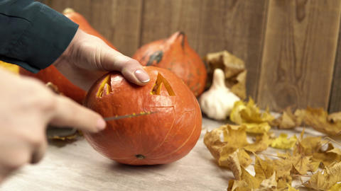Woman holds halloween pumpkin and carves the mouth using sharp knife Live Action