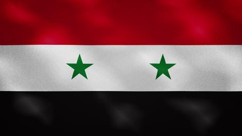 Syria dense flag fabric wavers, background loop Acción en vivo