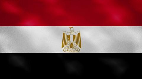 Egyptian dense flag fabric wavers, background loop Acción en vivo