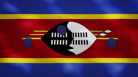 Kingdom of eSwatini dense flag fabric wavers, background loop Acción en vivo